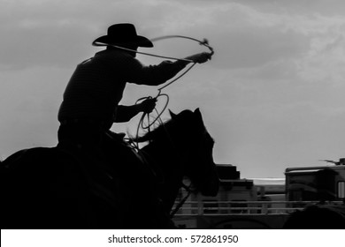 Cowboy Roping Calf Silhouette