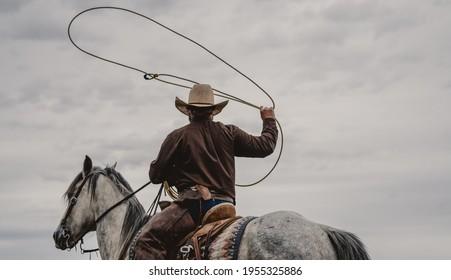 Cowboy roping on a grey horse