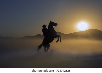 Cowboy silhouette on a horse during nice sunset and rear up