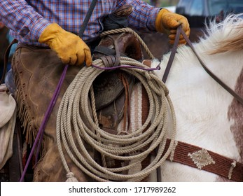 A cowboy sits his horse with all the tools of the trade: lariat, gloves, chaps, driving whip...