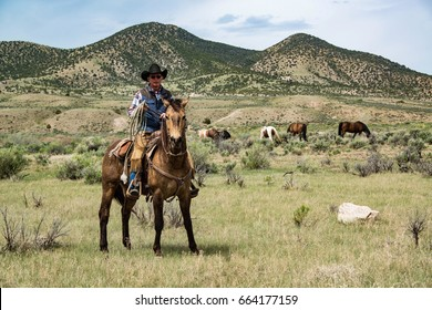 Cowboy wrangler ranch hand on horse with rope watching over horse herd on prairie