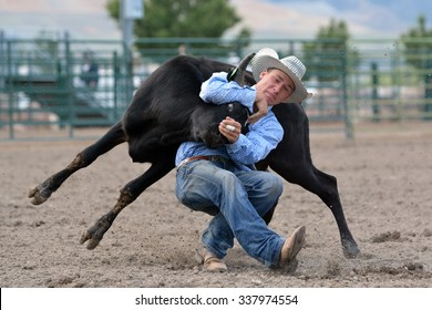 Cowboy wrestling a steer during a rodeo.