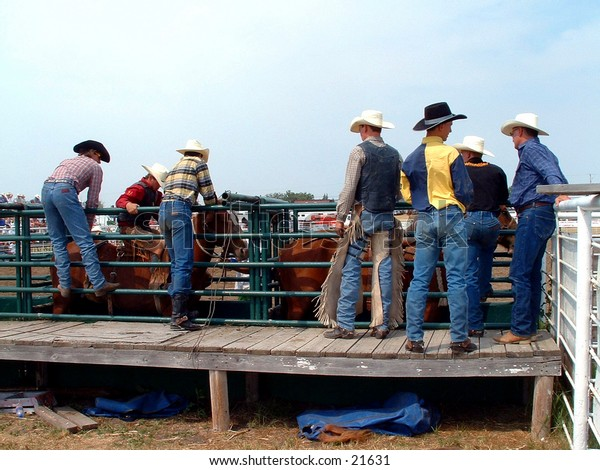 Cowboys getting ready to bronc-ride