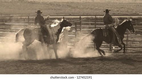 Cowboys ride horses