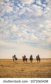 Cowboys riding the open range