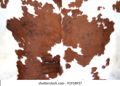 Cowhide for use as a background in full frame