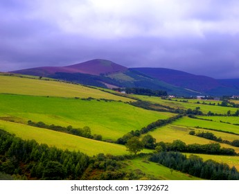 Co.Wicklow, Ireland showing fields with Great Sugarloaf Mountains in background