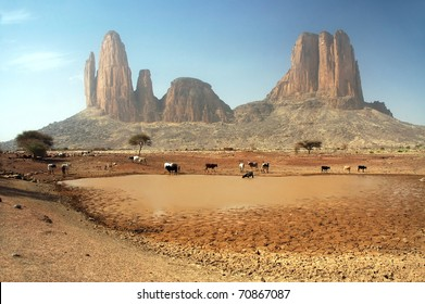 Cows around a dam in front of the Main de Fatima rock formation