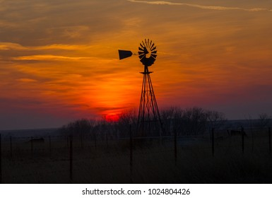 cows grazing below a windmill, on a Texas ranch, with the sun setting in the background.