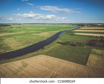 Cows grazing on green pasture by a river, under blue cloudy sky