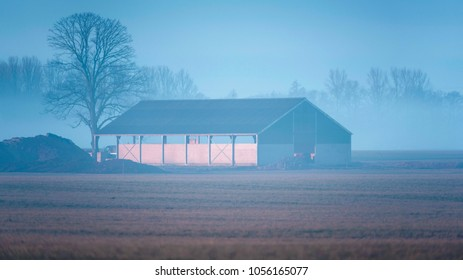 Cowshed and bare winter tree in misty rural landscape.