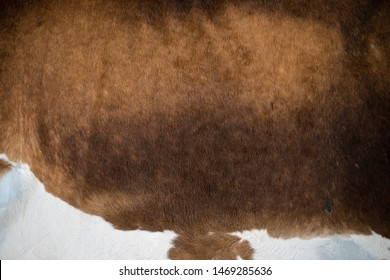 Cowskin cowhide background texture brown and white