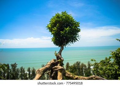 Cox's Bazar sea beach is the longest sea beach in the world. It is one of the most visited tourist destination in Bangladesh.