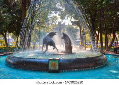 Coyoacan, Mexico City, Mexico-20 April, 2019: Drinking coyotes statue and fountain in Hidalgo Square in Coyoacan