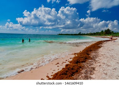 Cozumel Beach Images, Stock Photos & Vectors | Shutterstock