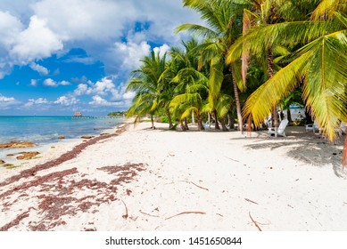 Cozumel Beach Images, Stock Photos & Vectors | Shutterstock