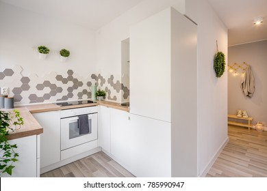 Cozy apartment with small, white kitchen and gray mudroom
