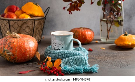 Cozy autumn composition. Hot cocoa with marshmallows in a blue ceramic mug with blue knitted scarf surrounded by autumn leaves and pumpkins on a gray table. Greeting card, coffee shop, Thanksgiving