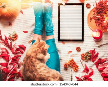 Cozy autumn mood concept with female legs in socks and leggins, ginger cat and blank letter board on white blanket background with pumpkin, rowan and fall leaves and branches. Top view. Insta style.