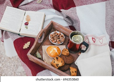 Cozy autumn picnic with tea and cookies