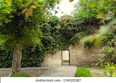 Cozy beautiful courtyard in Park on Sunny day. Doorway (passageway) in  stone wall (fence). Paths and green grass. On care grows vegetation-bindweed. Foreground in blur. Russia. Landscape orientation
