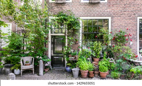 Cozy city house in Haarlem in the Netherlands with lots of pots, plants and a chair in front. Concept: city temperature or water management and control