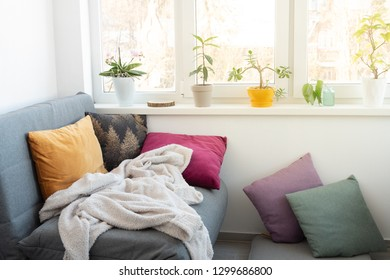 Cozy comfortable room with lot of light from window with sofa and cushions