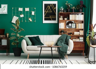Cozy, designer living room interior with a home library, antique wooden bookcase, beige sofa and modern, abstract art on a teal green wall