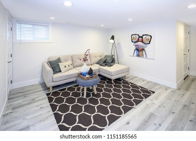 Cozy family room in a basement with corner sofa and brown rug.