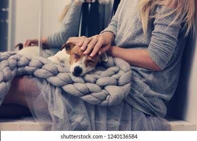 Cozy home, woman covered with warm blanket drinking coffee, Dog sleeping on female feet. Relax, carefree, comfort lifestyle.