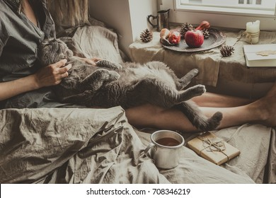 Cozy home. Woman with cute gray cat sitting in bed by the window.