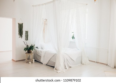 cozy light bedroom in a minimalist Scandinavian style bedroom, canopy bed, blanket pillows, plant. morning sunny photo