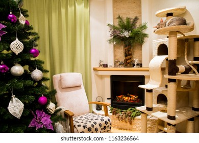 A cozy living room decorated to celebrate Christmas and New Year. Christmas tree with white and violet, purple, pink christmas handmade toys. Sleeping cute cat, ocicat pedigree.