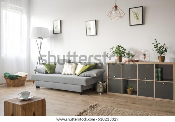 ソファ、本棚、敷物と居心地の良い居間