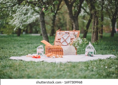 a cozy picnic in nature, in the park, a summer picnic in the countryside, 				picnic basket, photo shoot of flowering apple trees