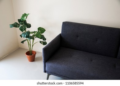 a cozy room with a plant next to a sofa