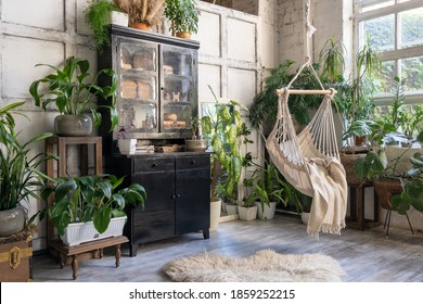 Cozy rope swing in living room with green houseplants in flower pot and black vintage chest of drawers. Comfort room with furniture in house with modern interior design - Shutterstock ID 1859252215
