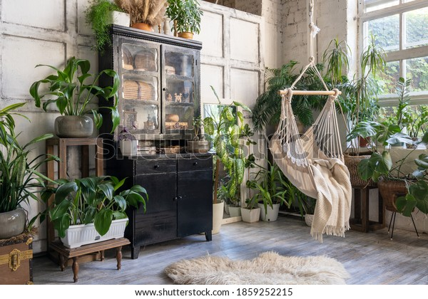 Cozy rope swing in living room with green houseplants in flower pot and black vintage chest of drawers. Comfort room with furniture in house with modern interior design
