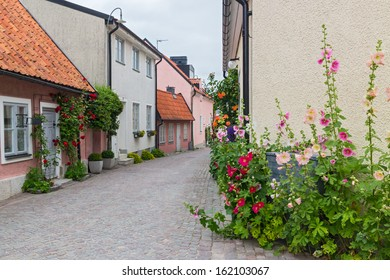 Cozy street with blooming mallows and roses. Visby, capital of Gotland, Sweden.