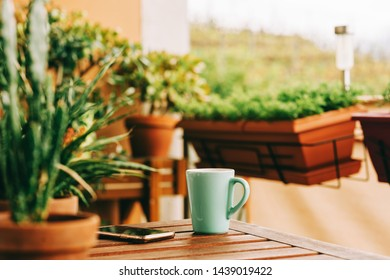 Cozy summer balcony with many potted plants, cup of tea and smartphone lying on wooden table