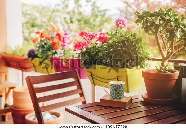 Уютный летний балкон со многими горшечными растениями, чашкой чая и старой старинной книгой