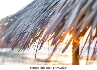 Cozy tropical roof made of straw on a sunset background