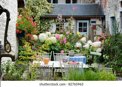 Cozy vintage backyard full of beautiful flowers