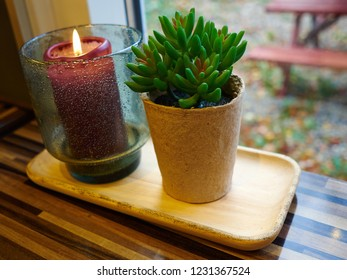 Cozy warm home indoors atmosphere by candle and a plant on a shelf by the window
