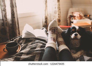 cozy winter day at home with cup of hot tea, book and sleeping dog. Spending weekend in bed, seasonal holidays and hygge concept