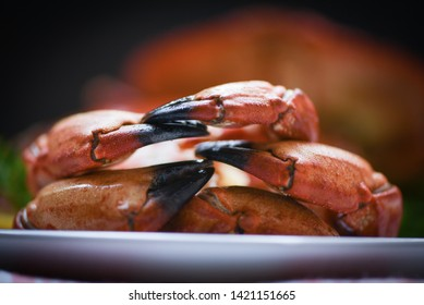 Crab claw cooked boiled on plate served seafood close up / Red stone crabs