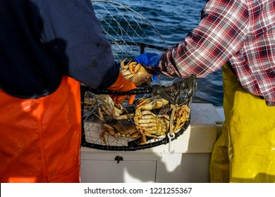 Crab fishing off the coast of Half Moon Bay Ca. in deep water