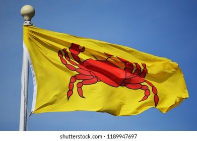 crab on flag
