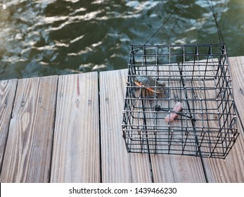 Crab in a Crab Trap