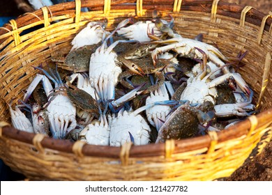 crabs in fish market